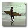 ...surfers look for waves...